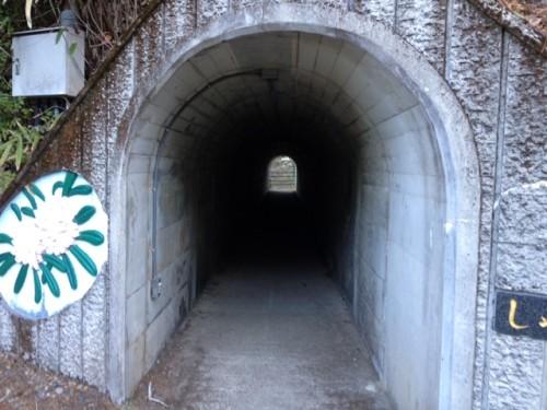 白水滝の大吊橋 しゃくなげトンネル