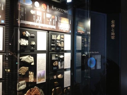 御船町 恐竜博物館6