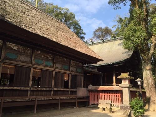 2015-11-20阿蘇青井神社 (9)